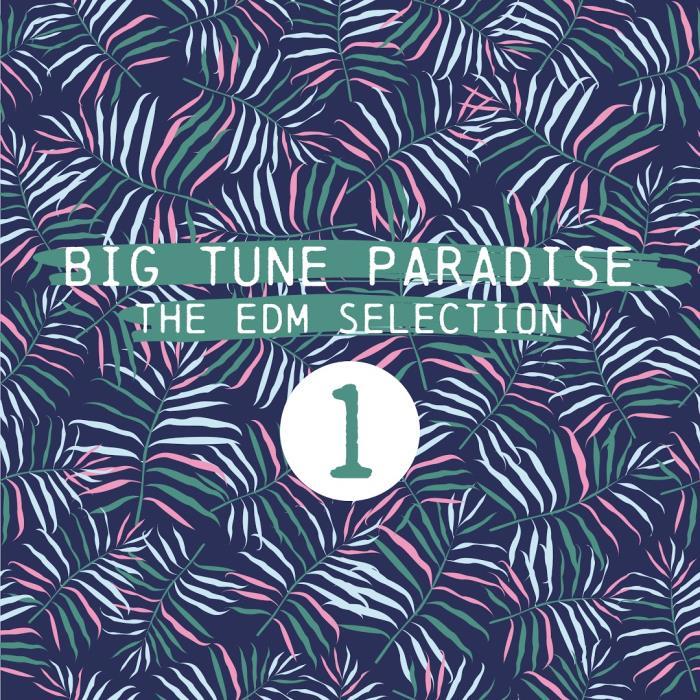 Big Tune Paradise (The EDM Selection, Vol. 1) (2018)