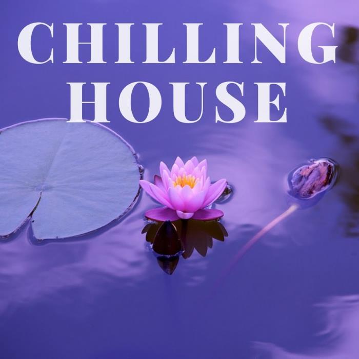 Digilio Edm - Chilling House (2018)