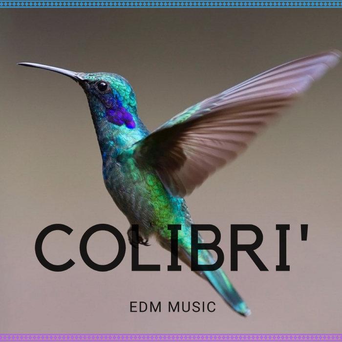 Digilio Edm - Colibri EDM Music (2018)