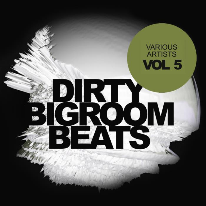 Dirty Bigroom Beats, Vol. 5 (2018)