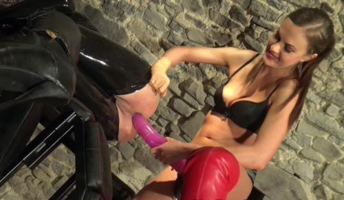 Unknown - Horny for horse dong Part 2 (HD)