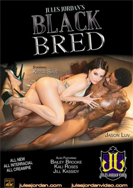 Bailey Brooke, Kissa Sins,Jill Kassidy, Kali Roses. - Black Bred (SD)