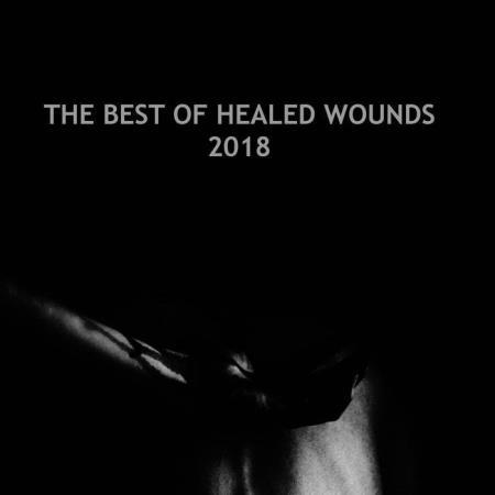 Modular Phaze - The Best Of Healed Wounds 2018 (2019) Flac