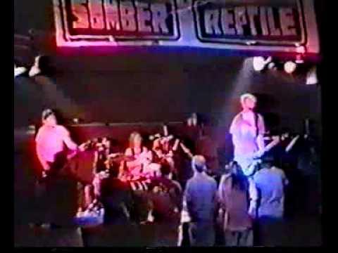 Wizo - Live in München 22.05.1993 (Livemitschnitt)